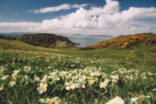Luxury Travel Guide to Sark Channel Islands
