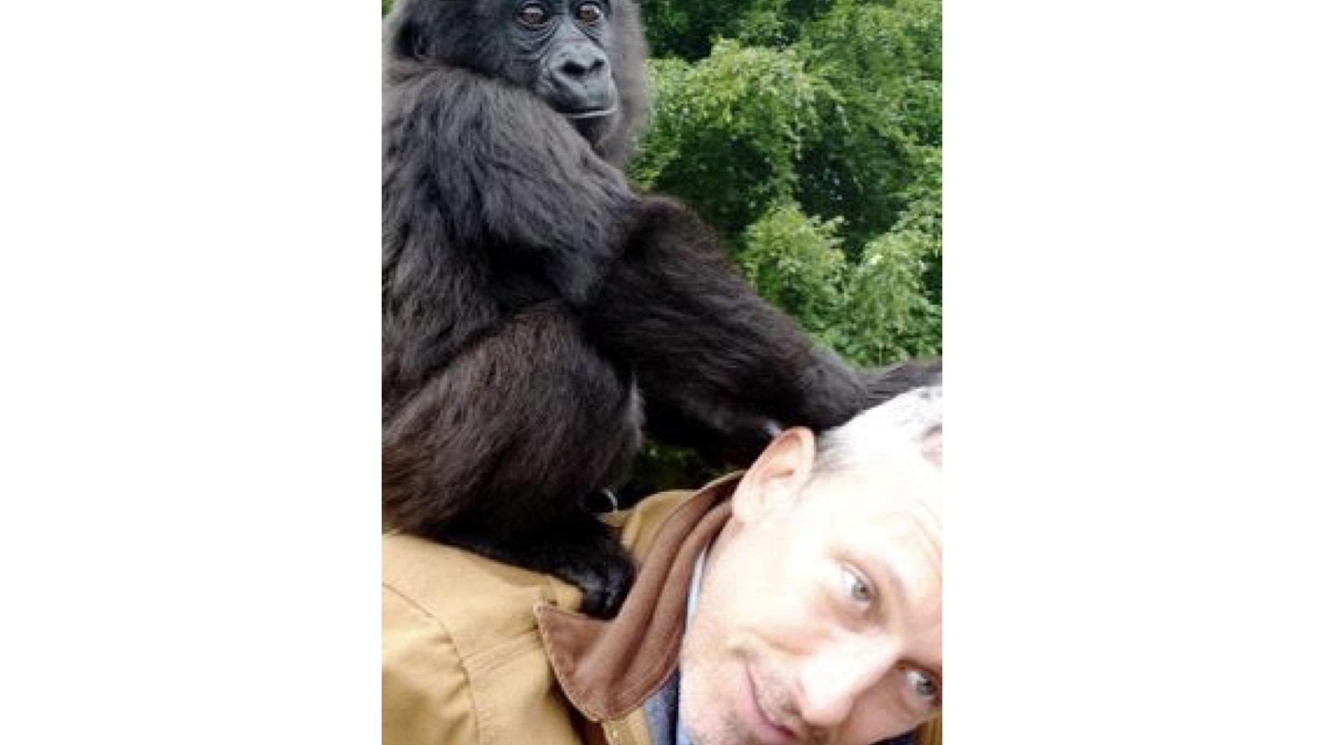 Patrick with gorillas in Gabon